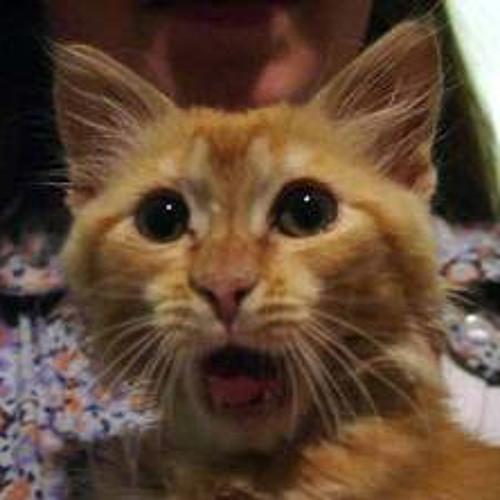 thatcat's avatar