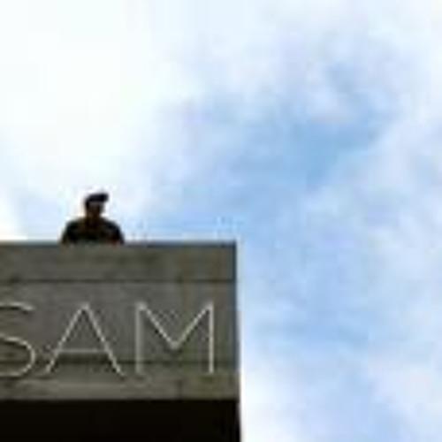 Sam Marshall 11's avatar