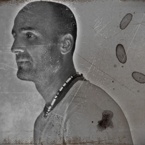 felo alamo's avatar