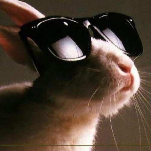 StephFPM's avatar