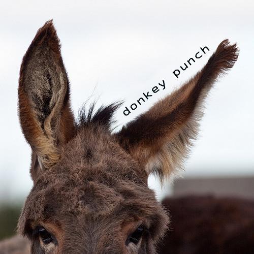 Donkey Punch Podcast's avatar