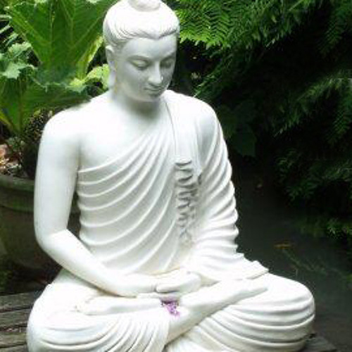 Dhamma Song's avatar