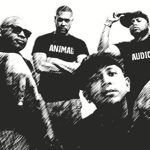 animal audio's avatar