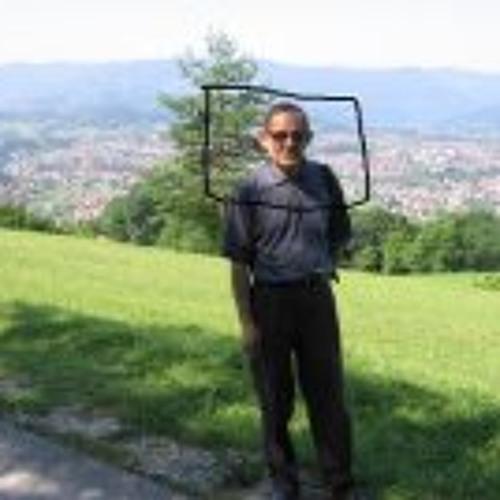 Milan Adjanski's avatar