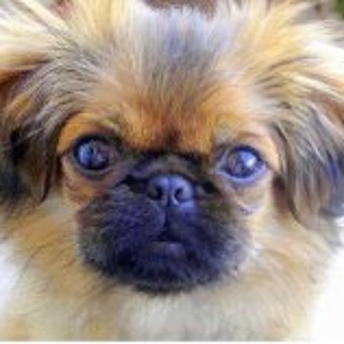 Edgar Ruciles Dogie's avatar