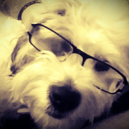 bampepablo's avatar