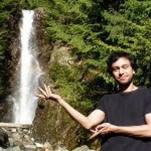 Arash Alimardany's avatar
