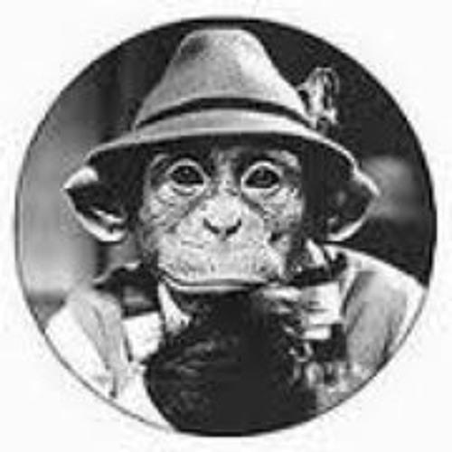 Jelle van Nieuwenhuizen's avatar