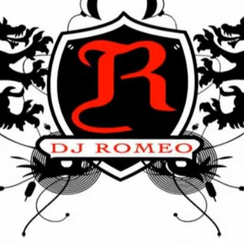 Welcome To 2013 DJ ROMEO Party Mix(extended version)