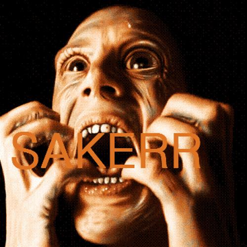 Sakerr's avatar