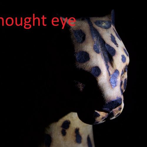 i thought eye's avatar