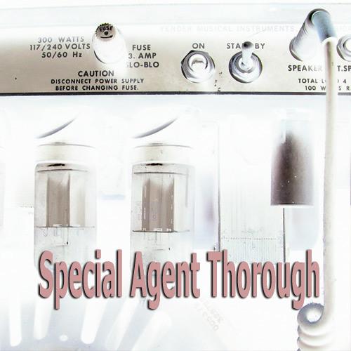 Special Agent Thorough's avatar