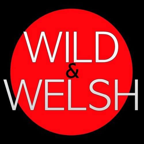 WILD&WELSH's avatar
