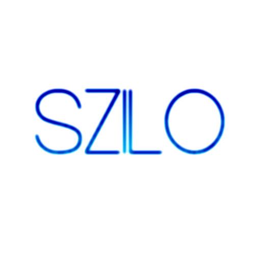 SZILO (Ducks Records)'s avatar