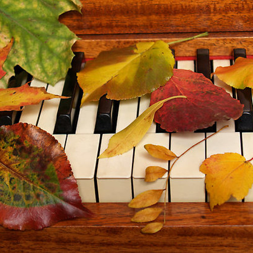 Autumn Colors Music's avatar