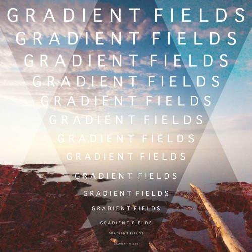 Gradient Fields's avatar