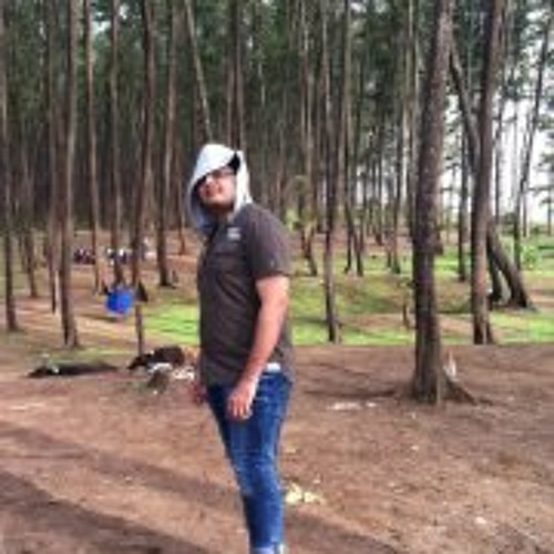 Ankit Gokani's avatar