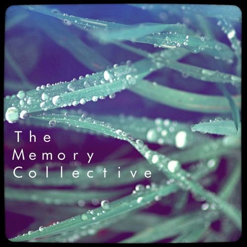 The Memory Collective's avatar