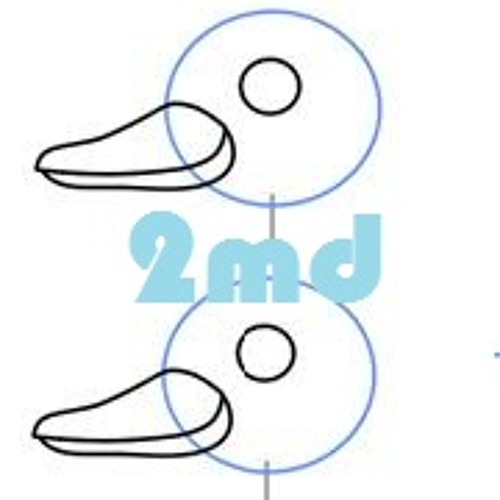 2md - Two Muddy Ducks's avatar