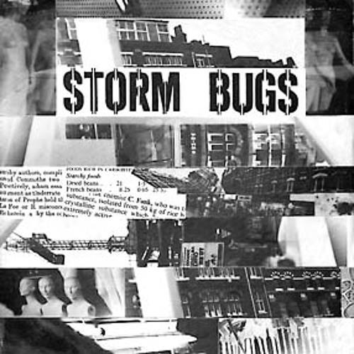 Storm Bugs's avatar