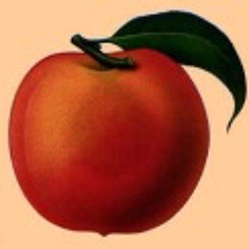 peachgeek's avatar