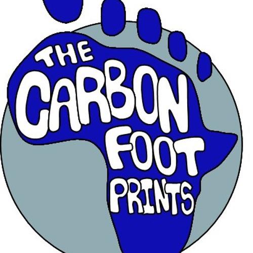 The Carbon Footprints's avatar