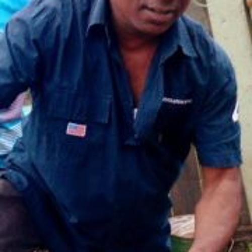 Leonard Leo Gomes II's avatar