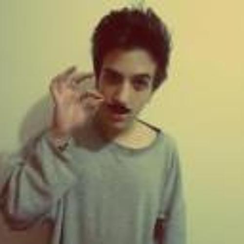 Lucas Viceli Ferraresi's avatar