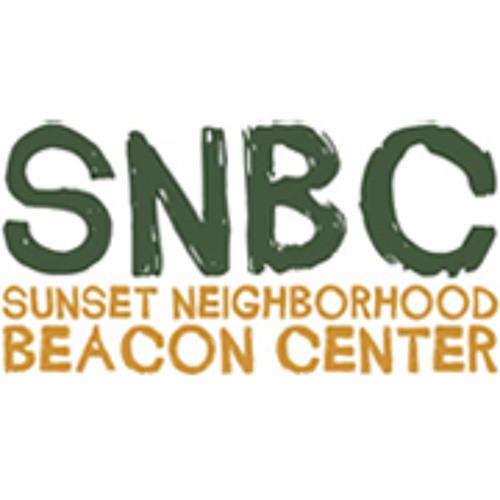 SNBC's avatar