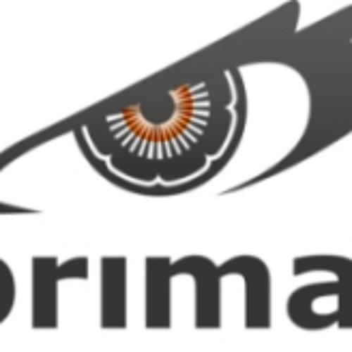 Primal Recordings's avatar