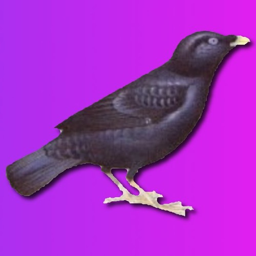 satinbower's avatar