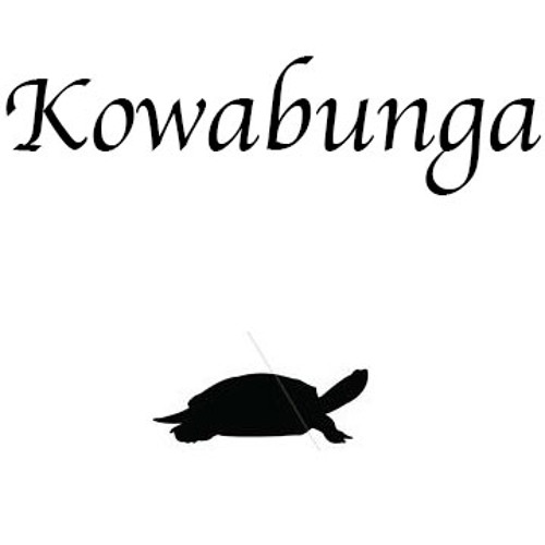 Kowabunga Records's avatar