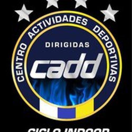 Centro Dirigidas's avatar