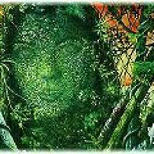 Lilicat Gonzalez's avatar