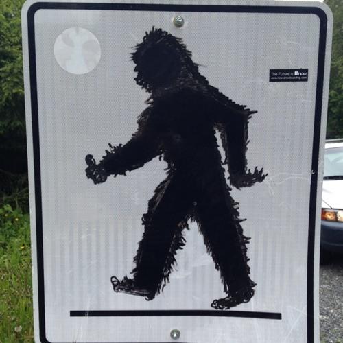 whistlergonewild's avatar
