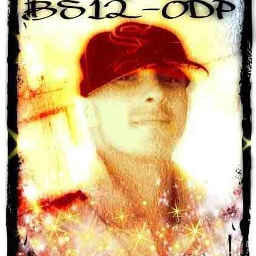 BS12-ODP's avatar