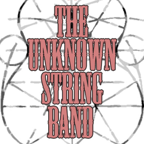 the Unknown String Band's avatar