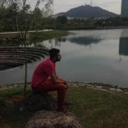 Shahin Shirazi 1's avatar