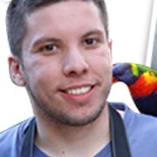 Artur Figueira's avatar