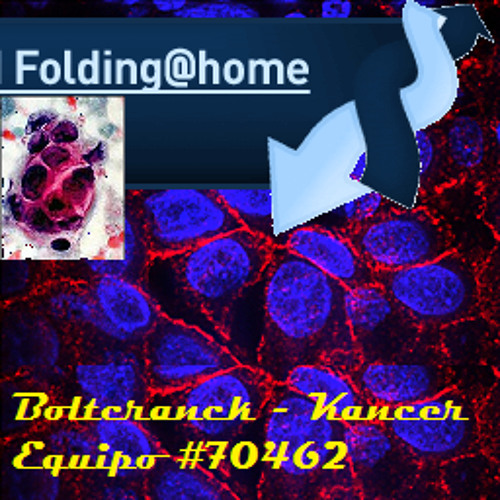boltcranck's avatar