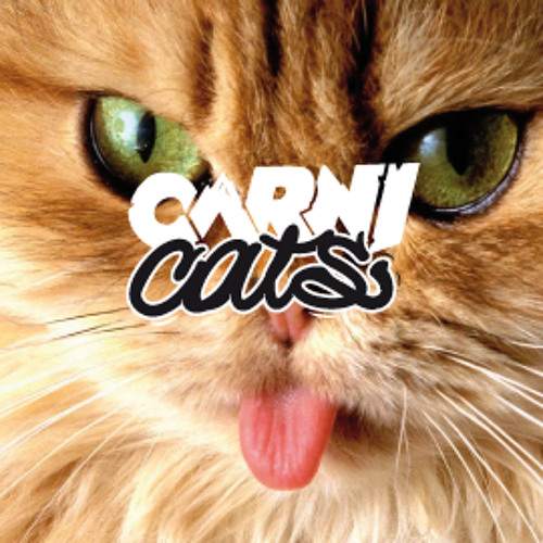 Carnicats's avatar