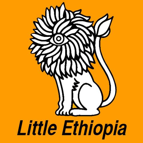 littlethiopia's avatar