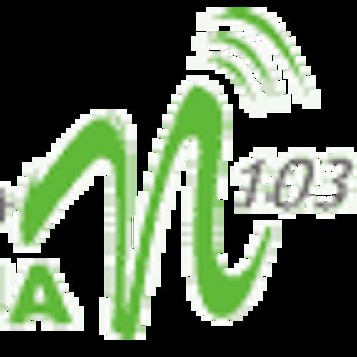 Radiowy mix PaT Lubliniec 2012