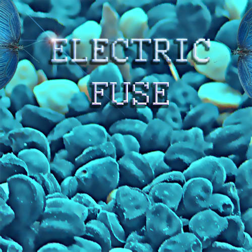 Electric fuse's avatar