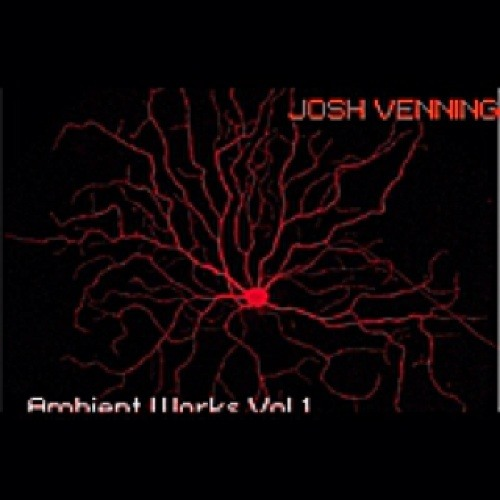 josh-venning's avatar