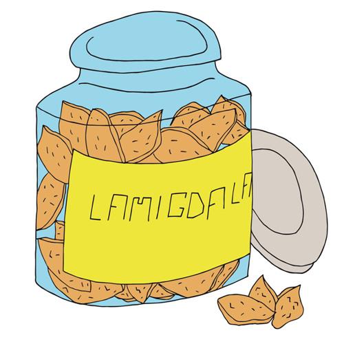 LAMIGDALA's avatar