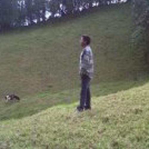 Cristian Andres Gaibor's avatar