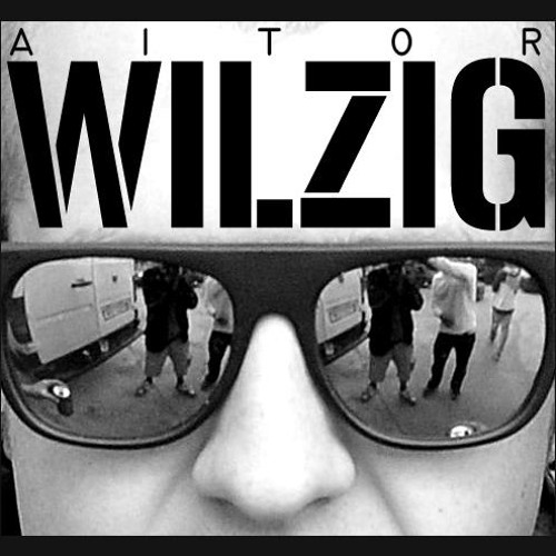 Aitor Wilzig's avatar