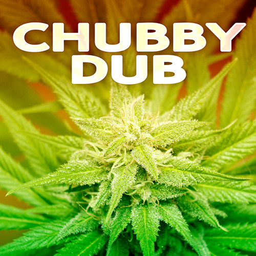 CHUBBYDUB's avatar
