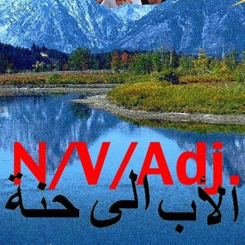 N/V/Adj.'s avatar